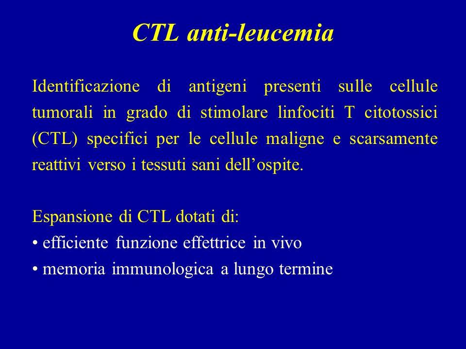 CTL anti-leucemia Identificazione di antigeni presenti sulle cellule tumorali in grado di stimolare linfociti T citotossici (CTL) specifici per le cellule maligne e scarsamente reattivi verso i tessuti sani dellospite.