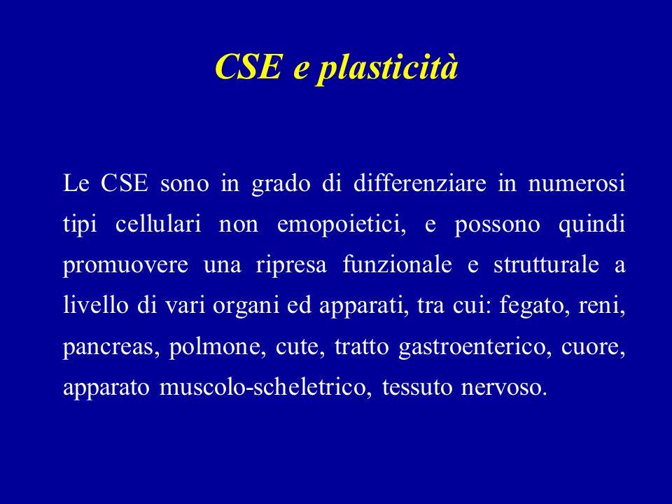 CSE e plasticità Le CSE sono in grado di differenziare in numerosi tipi cellulari non emopoietici, e possono quindi promuovere una ripresa funzionale e strutturale a livello di vari organi ed apparati, tra cui: fegato, reni, pancreas, polmone, cute, tratto gastroenterico, cuore, apparato muscolo-scheletrico, tessuto nervoso.