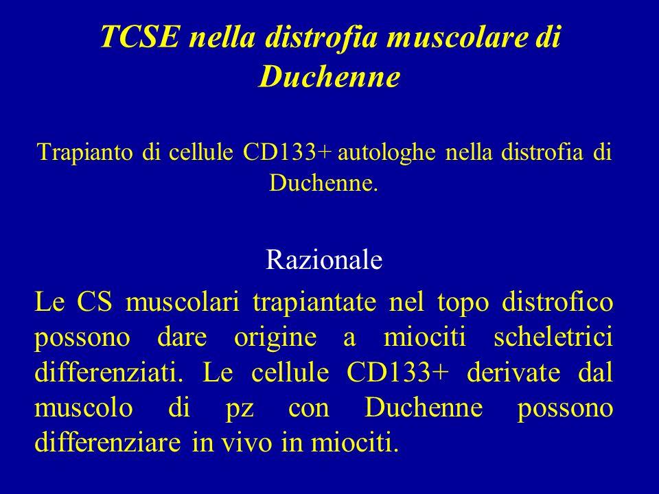 TCSE nella distrofia muscolare di Duchenne Trapianto di cellule CD133+ autologhe nella distrofia di Duchenne.