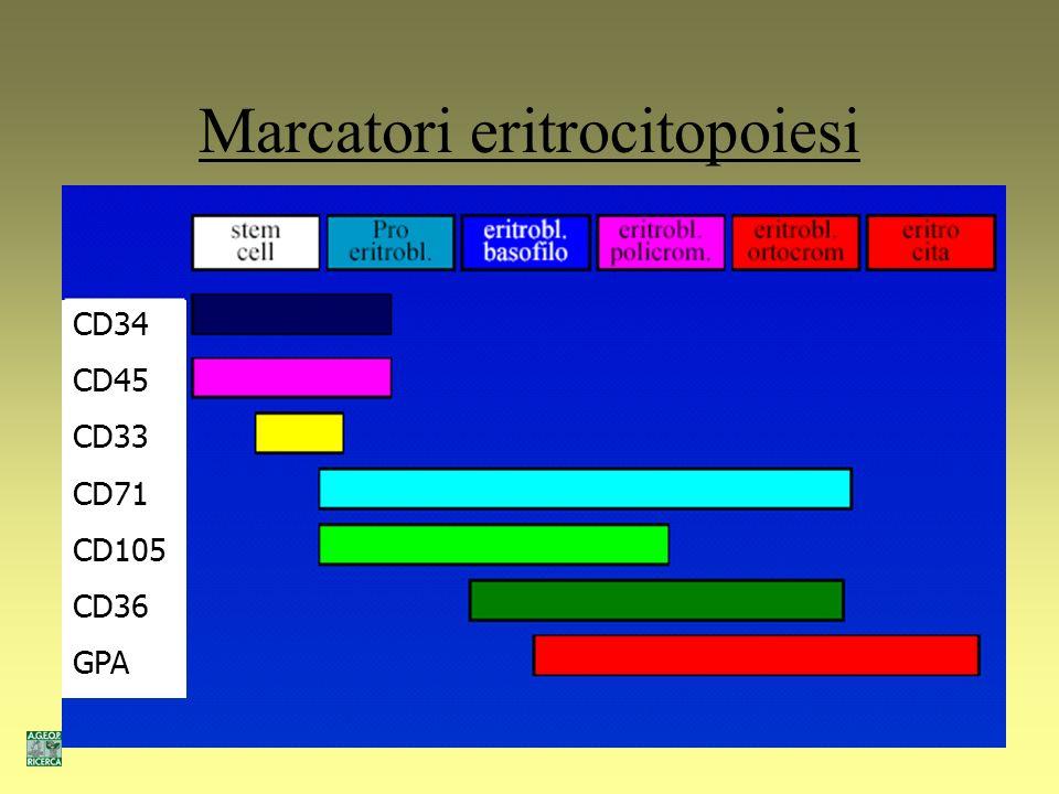 Marcatori monocitopoiesi CD34 CD13 CD33 CD14 CD11b CD16 CD66b CD66c CD15