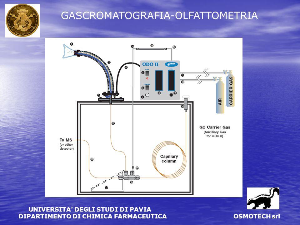 UNIVERSITA DEGLI STUDI DI PAVIA DIPARTIMENTO DI CHIMICA FARMACEUTICA OSMOTECH srl GC-O: modello ODO II (SGE)