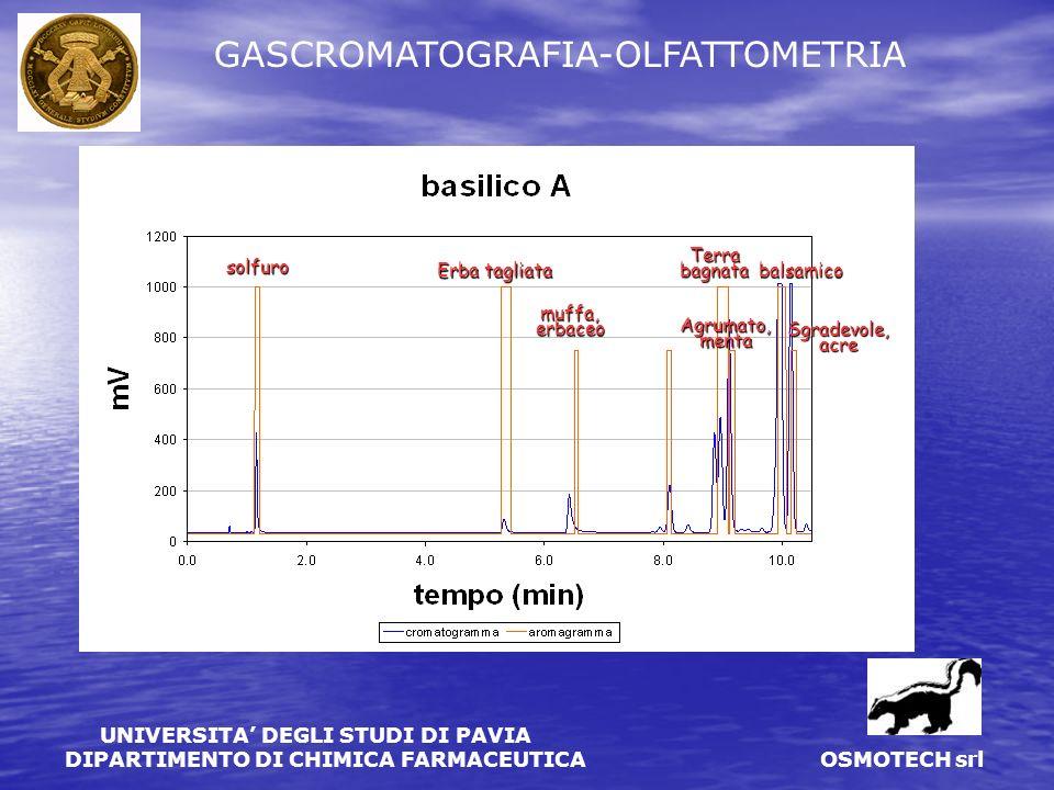 UNIVERSITA DEGLI STUDI DI PAVIA DIPARTIMENTO DI CHIMICA FARMACEUTICA OSMOTECH srl GASCROMATOGRAFIA-OLFATTOMETRIA DI EMISSIONI DA COMPOSTAGGIO decomposizione agliaceo sulfureo