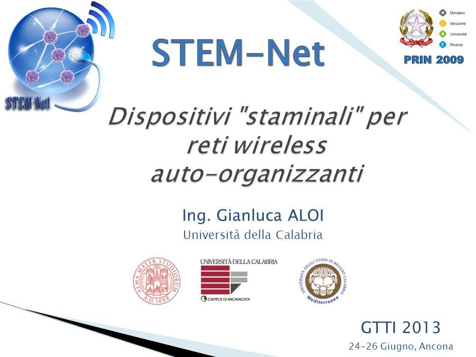 GTTI 2013 24-26 Giugno, Ancona Ing. Gianluca ALOI Università della Calabria