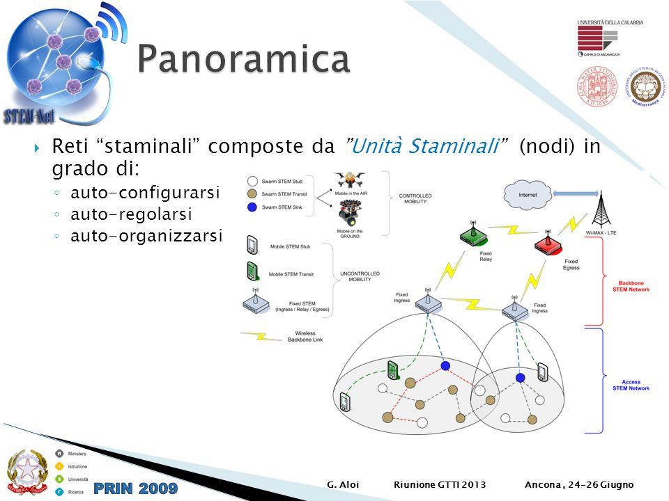 Reti staminali composte da Unità Staminali (nodi) in grado di: auto-configurarsi auto-regolarsi auto-organizzarsi Ancona, 24-26 GiugnoG. AloiRiunione