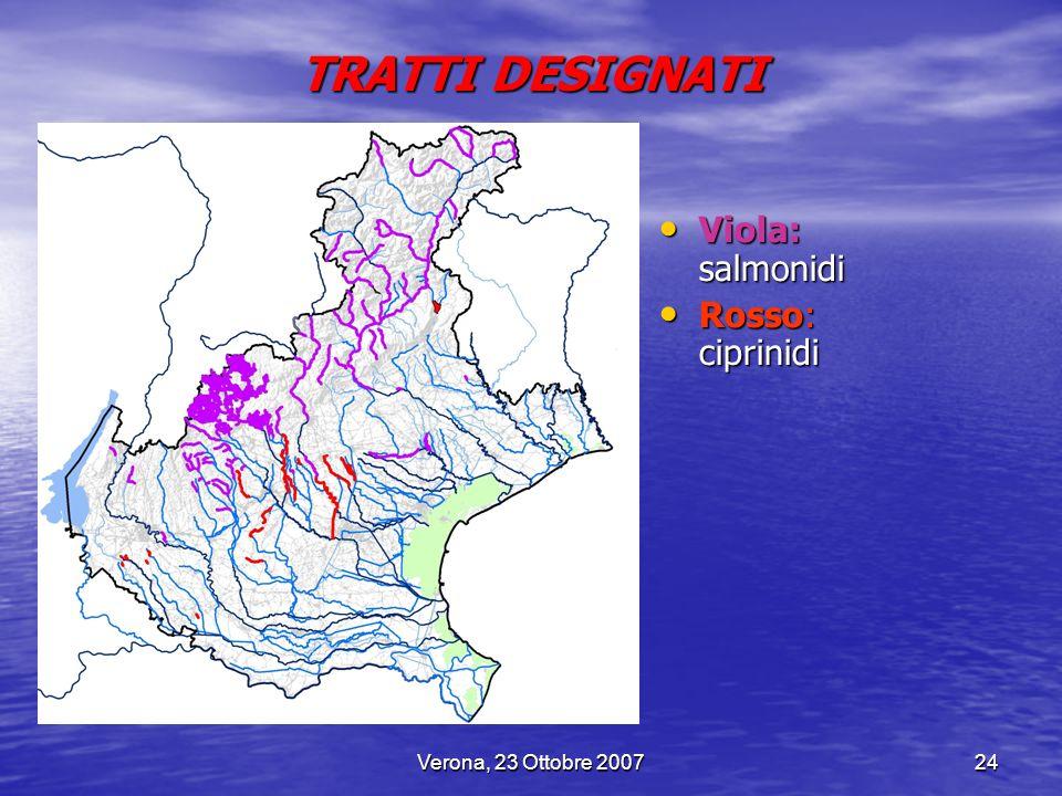 Verona, 23 Ottobre 200724 TRATTI DESIGNATI Viola: salmonidi Viola: salmonidi Rosso: ciprinidi Rosso: ciprinidi