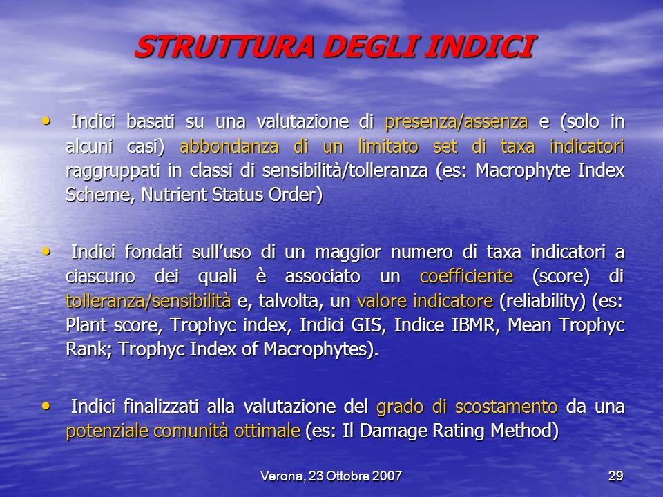 Verona, 23 Ottobre 200729 STRUTTURA DEGLI INDICI Indici basati su una valutazione di presenza/assenza e (solo in alcuni casi) abbondanza di un limitat