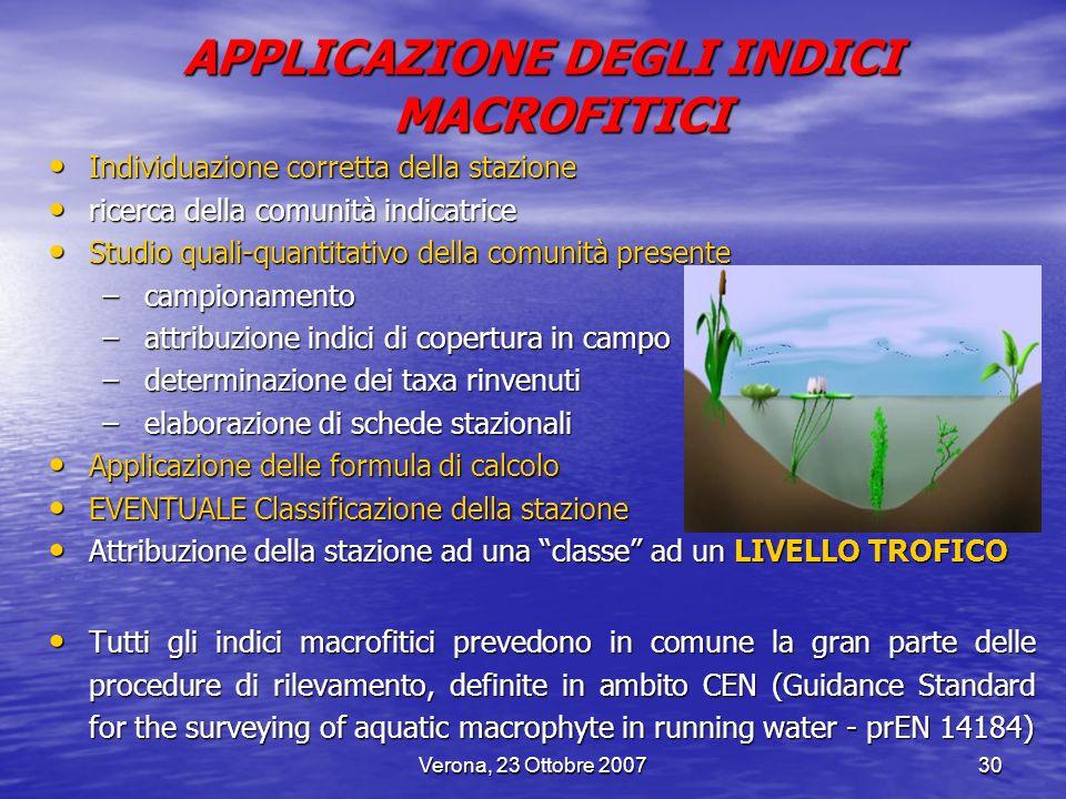 Verona, 23 Ottobre 200730 APPLICAZIONE DEGLI INDICI MACROFITICI Individuazione corretta della stazione Individuazione corretta della stazione ricerca