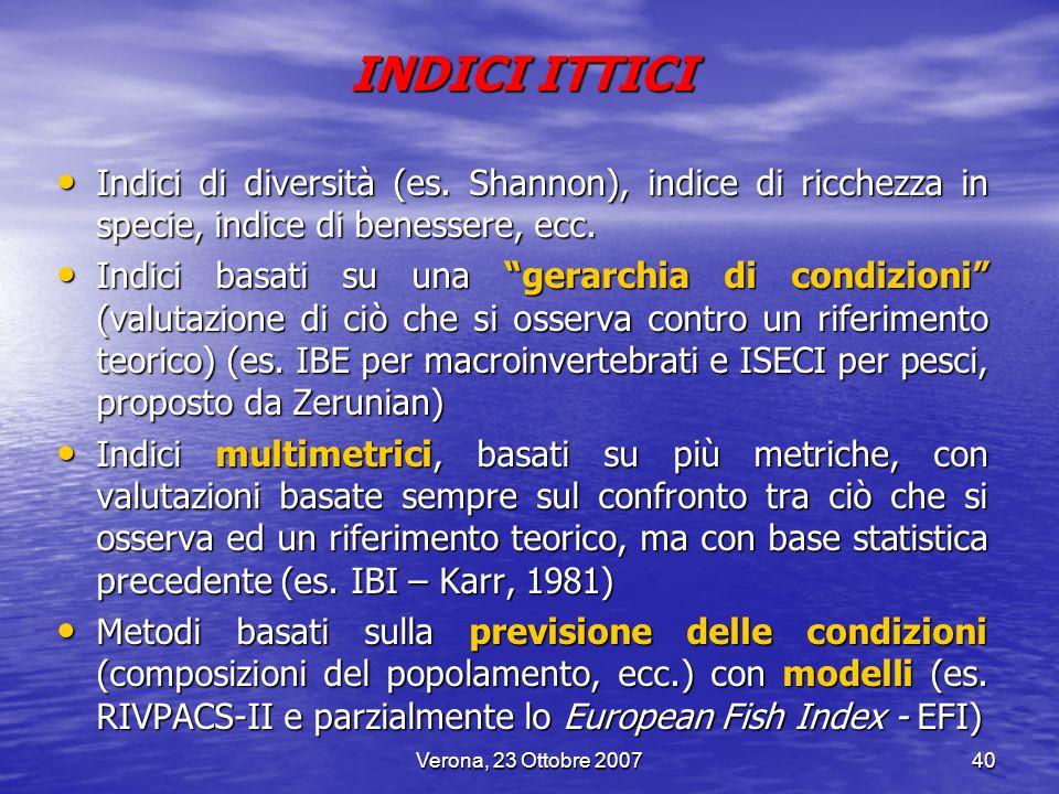 Verona, 23 Ottobre 200740 INDICI ITTICI Indici di diversità (es. Shannon), indice di ricchezza in specie, indice di benessere, ecc. Indici di diversit