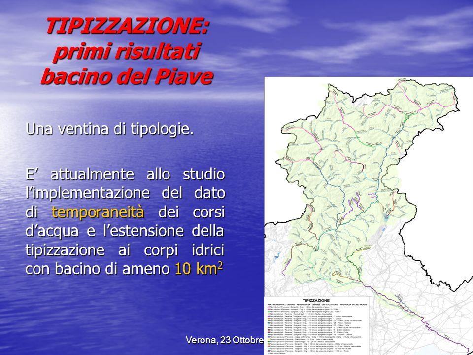 Verona, 23 Ottobre 20077 TIPIZZAZIONE: primi risultati bacino del Piave Una ventina di tipologie. E attualmente allo studio limplementazione del dato
