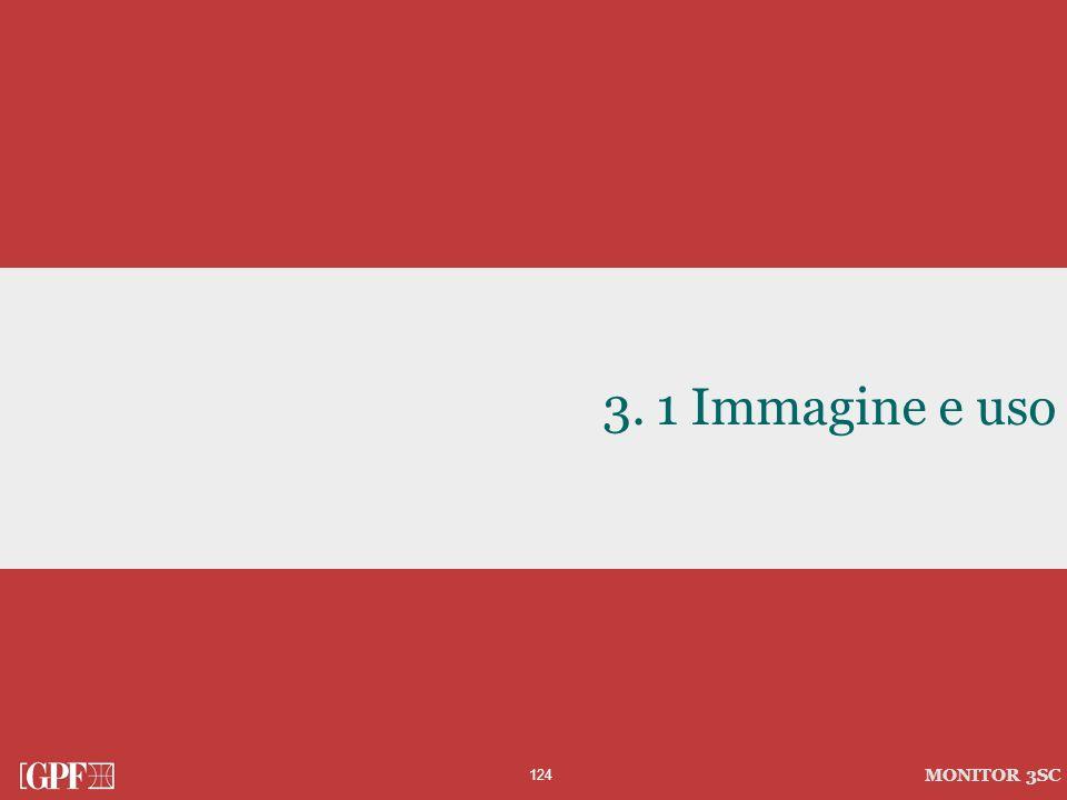124 MONITOR 3SC 3.1 Immagine e uso