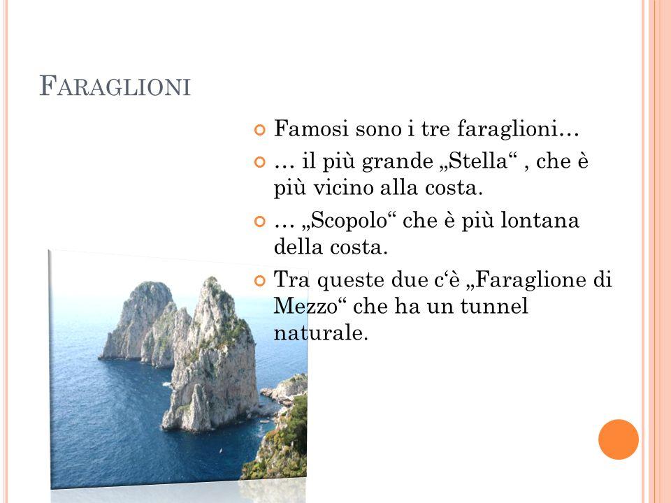 F ARAGLIONI Famosi sono i tre faraglioni… … il più grande Stella, che è più vicino alla costa.