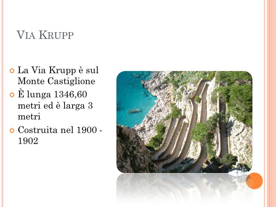 V IA K RUPP La Via Krupp è sul Monte Castiglione È lunga 1346,60 metri ed è larga 3 metri Costruita nel 1900 - 1902