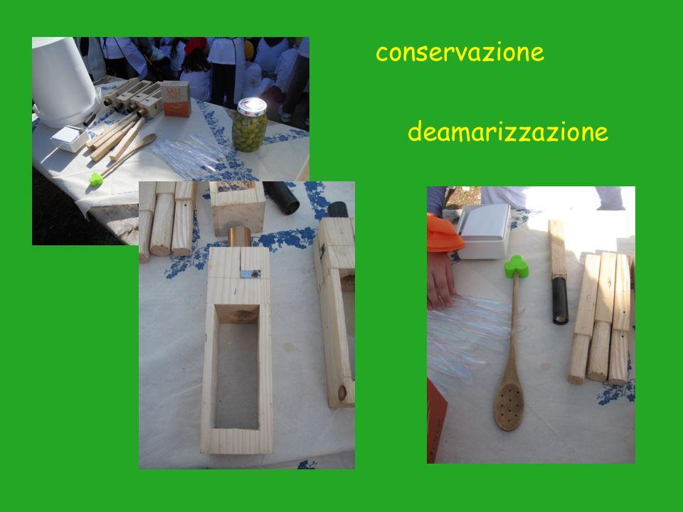 conservazione deamarizzazione