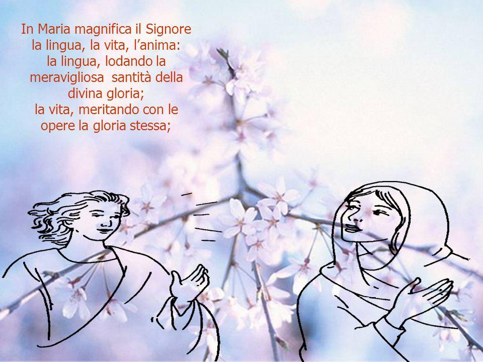 Lanima mia magnifica il Signore, dice Maria, non solo con la bocca lo magnifica, non solo con lintegrità del corpo, ma per il carattere unico del suo amore.