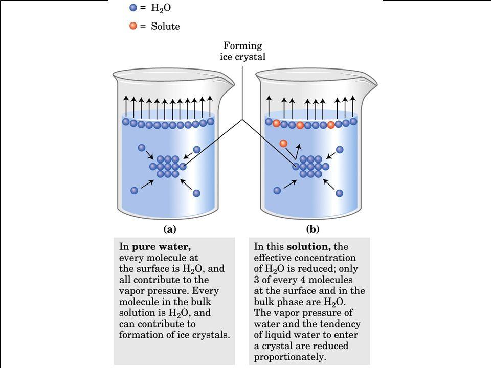 Effetto dei soluti sulle caratteristiche fisiche dellacqua Allaumentare della concentrazione di soluti corrisponde: a) AUMENTO DELLA TEMPRATURA DI EBO
