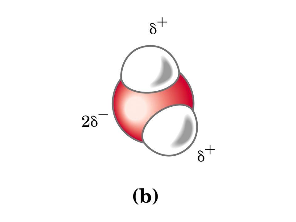 Effetto dei soluti sulle caratteristiche fisiche dellacqua Allaumentare della concentrazione di soluti corrisponde: a) AUMENTO DELLA TEMPRATURA DI EBOLLIZIONE b) DIMINUZIONE DELLA TEMPERATURA DI CONGELAMENTO