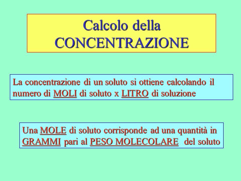 Calcolo della CONCENTRAZIONE La concentrazione di un soluto si ottiene calcolando il numero di MOLI di soluto x LITRO di soluzione Una MOLE di soluto