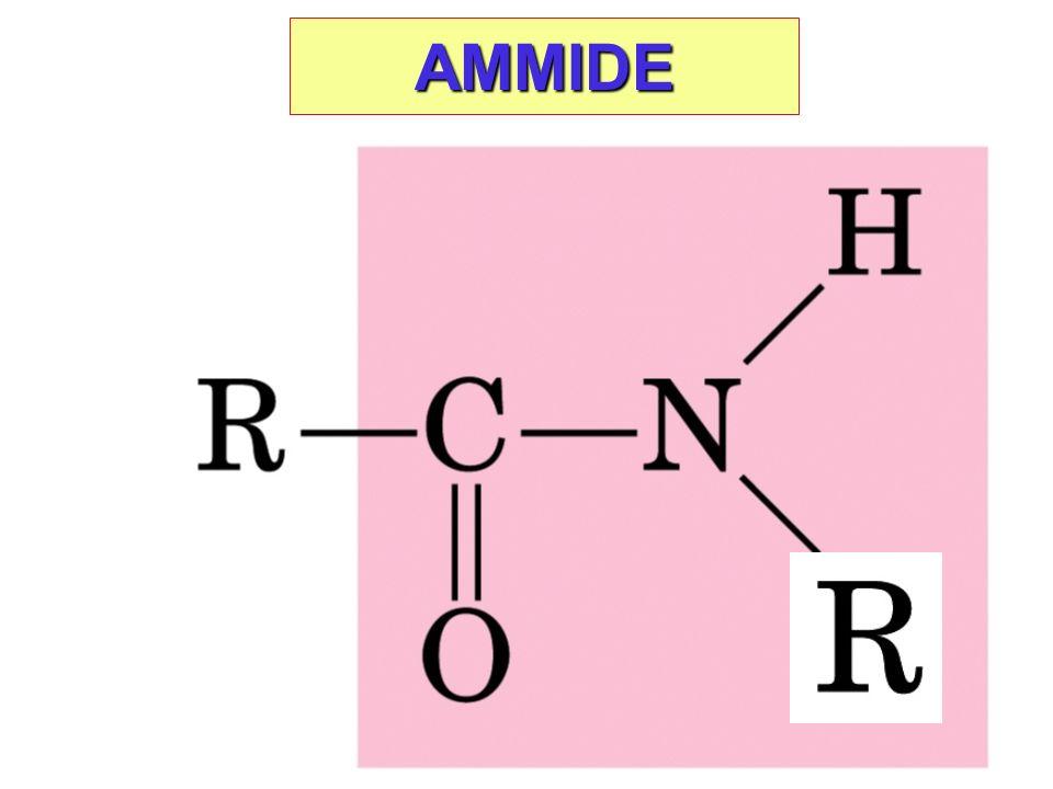 AMMIDE
