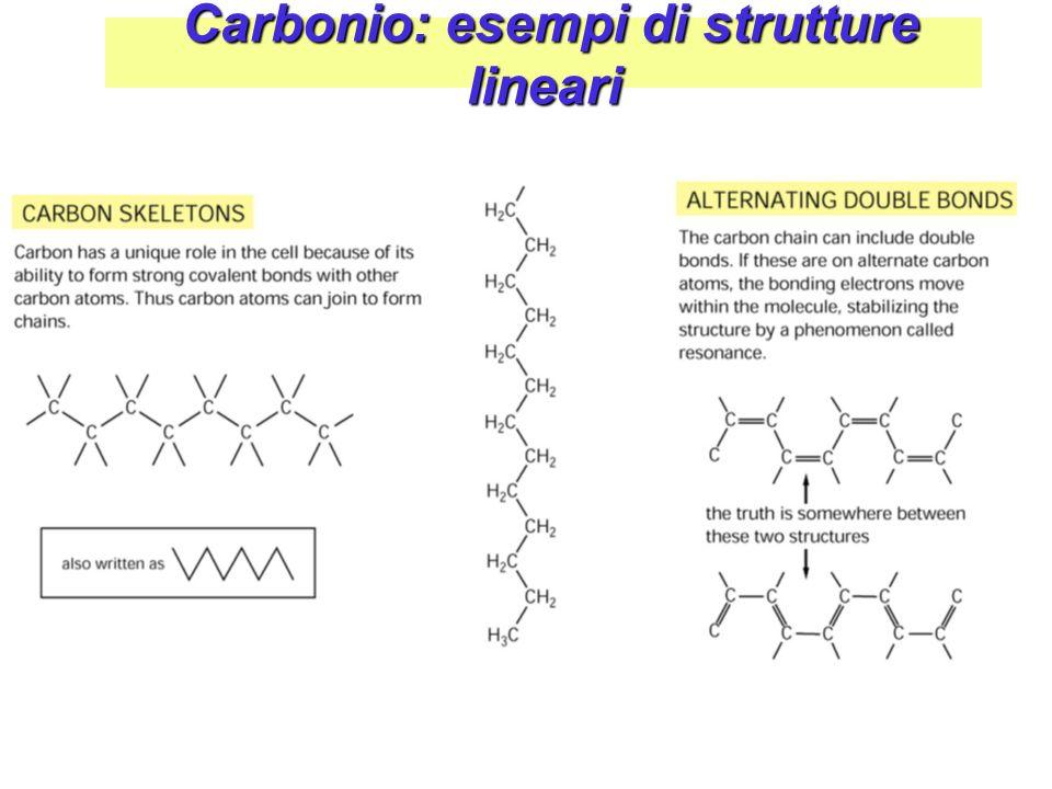 Carbonio: strutture Ramificata & Ciclica