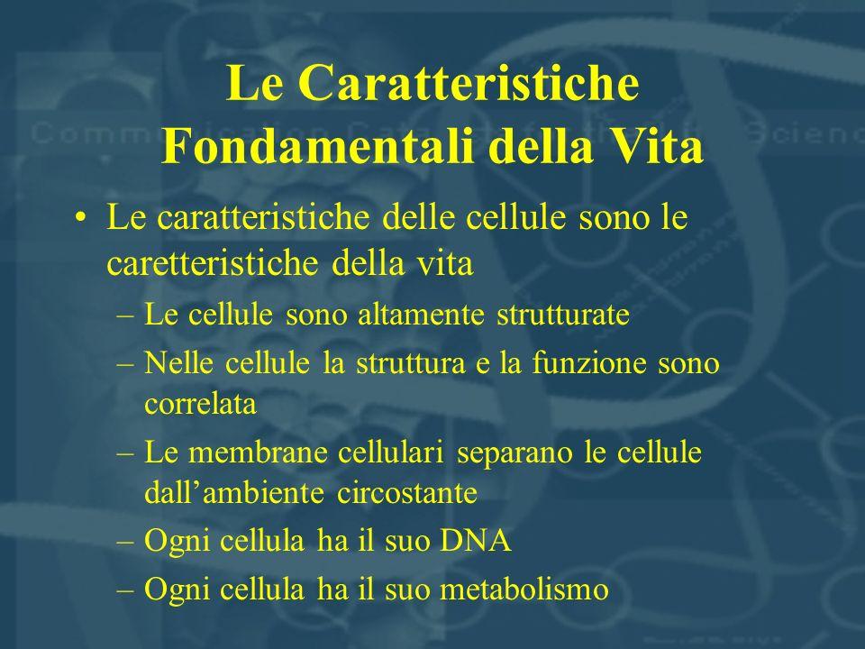 Le Caratteristiche Fondamentali della Vita Le caratteristiche delle cellule sono le caretteristiche della vita –Le cellule sono altamente strutturate