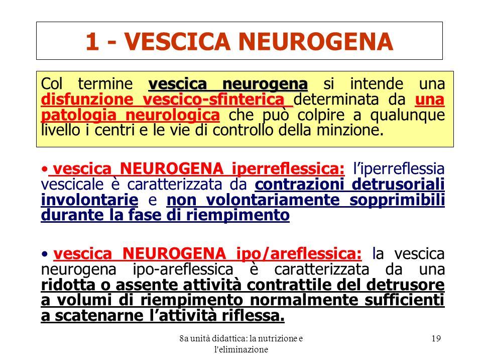8a unità didattica: la nutrizione e l eliminazione 19 vescica neurogena vescico-sfinterica Col termine vescica neurogena si intende una disfunzione vescico-sfinterica determinata da una patologia neurologica che può colpire a qualunque livello i centri e le vie di controllo della minzione.