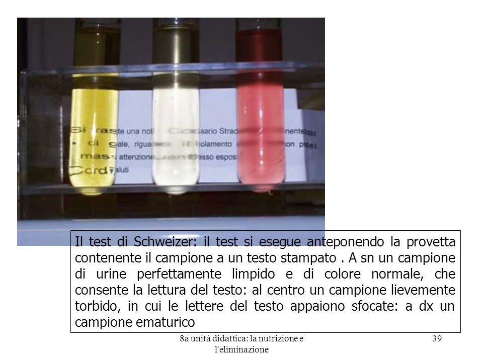 8a unità didattica: la nutrizione e l eliminazione 39 Il test di Schweizer: il test si esegue anteponendo la provetta contenente il campione a un testo stampato.