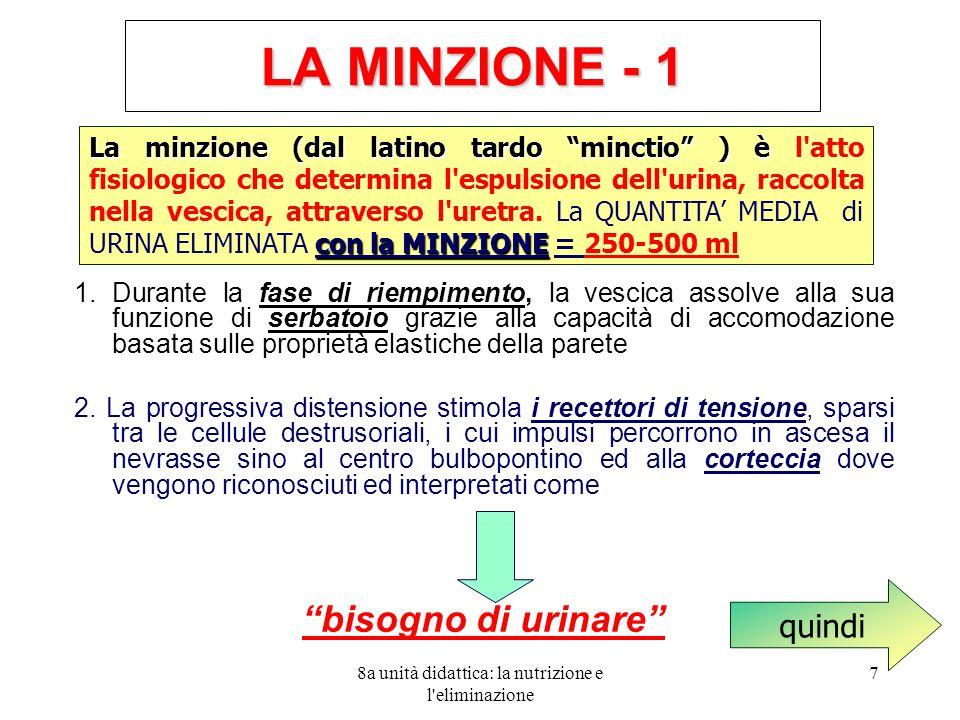 8a unità didattica: la nutrizione e l eliminazione 7 LA MINZIONE - 1 1.
