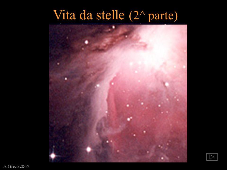A.Greco 2005 Vita da stelle (2^ parte)