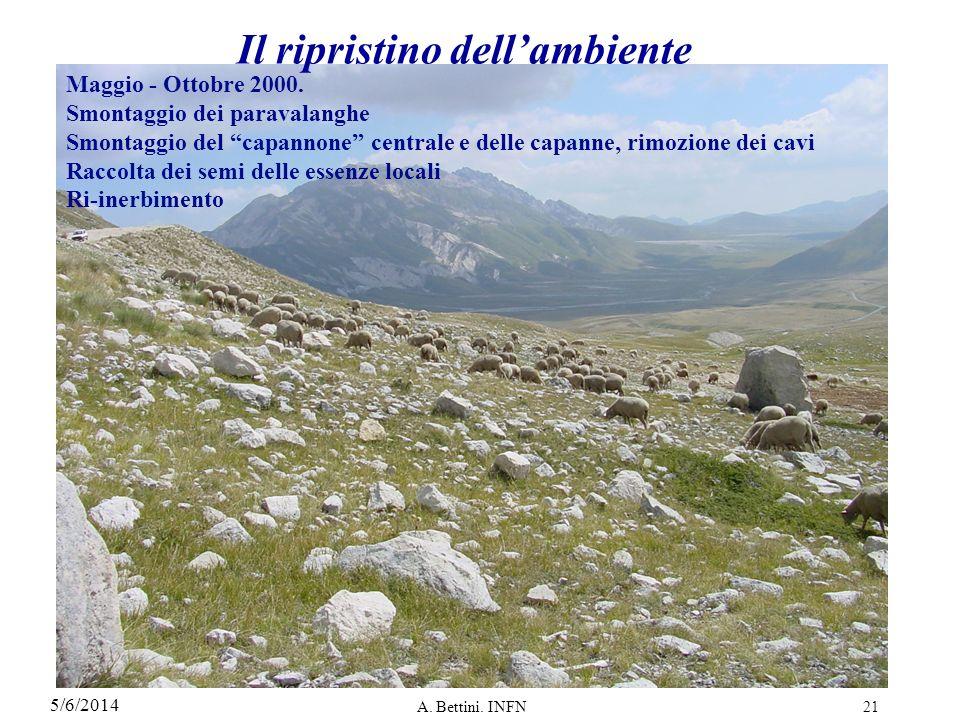 5/6/2014 A.Bettini. INFN21 Il ripristino dellambiente Maggio - Ottobre 2000.