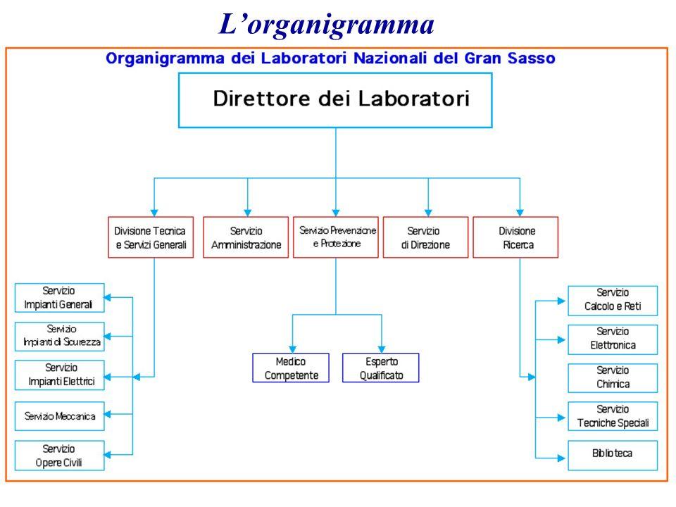 5/6/2014 A. Bettini. INFN7 Lorganigramma
