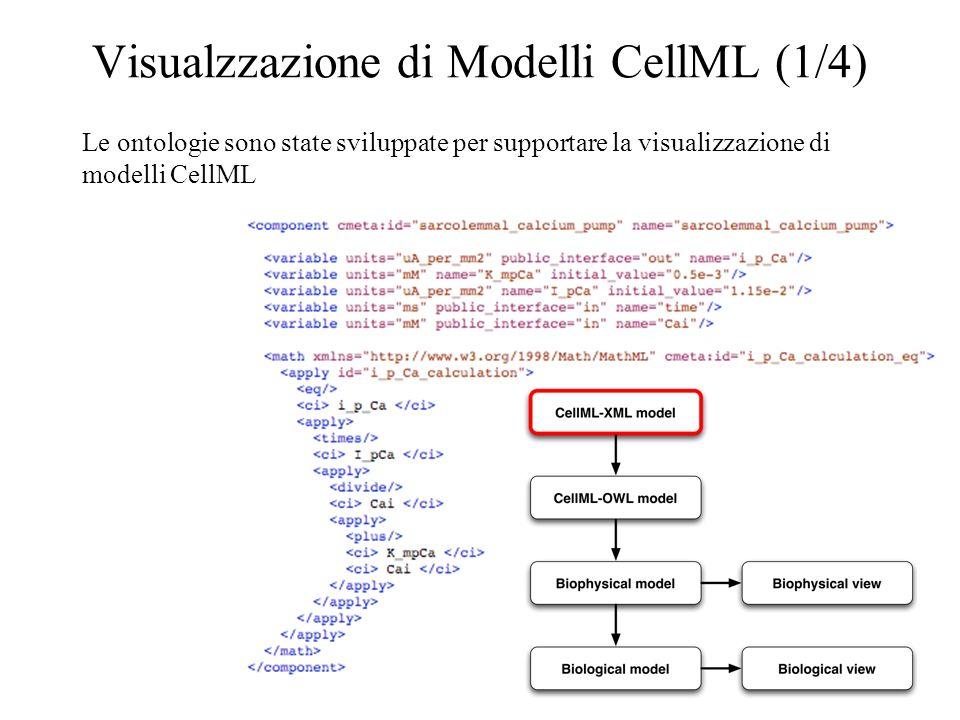 Visualzzazione di Modelli CellML (1/4) Le ontologie sono state sviluppate per supportare la visualizzazione di modelli CellML