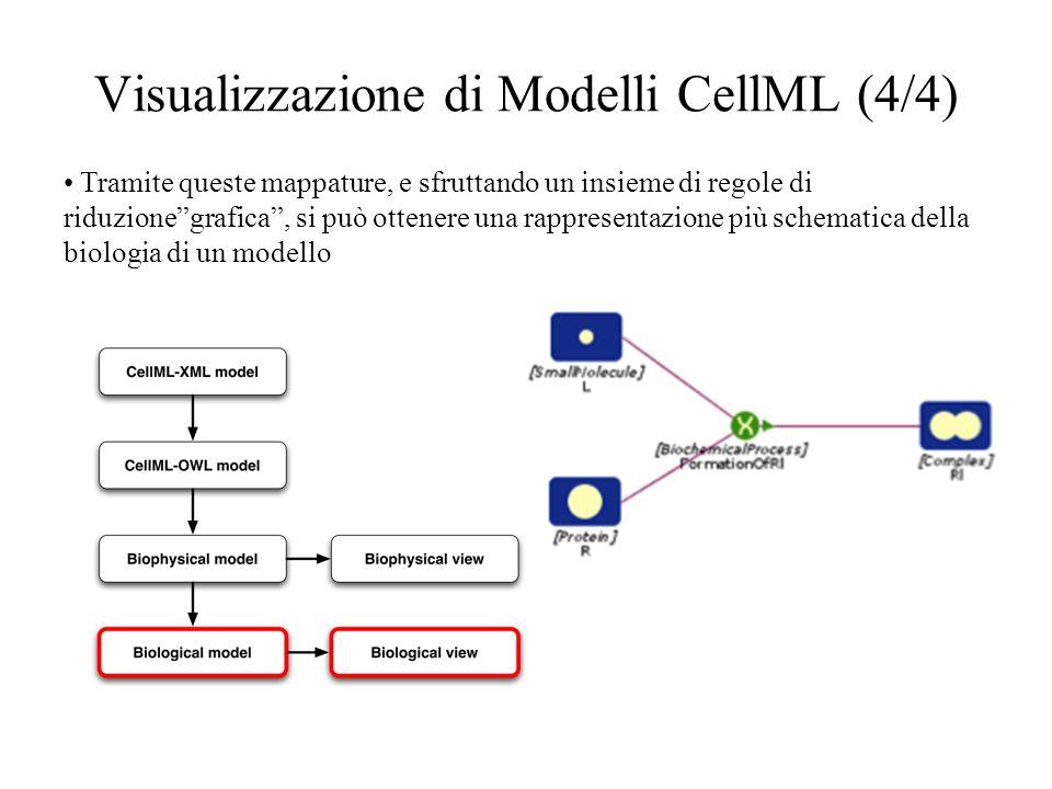 Visualizzazione di Modelli CellML (4/4) Tramite queste mappature, e sfruttando un insieme di regole di riduzionegrafica, si può ottenere una rappresentazione più schematica della biologia di un modello