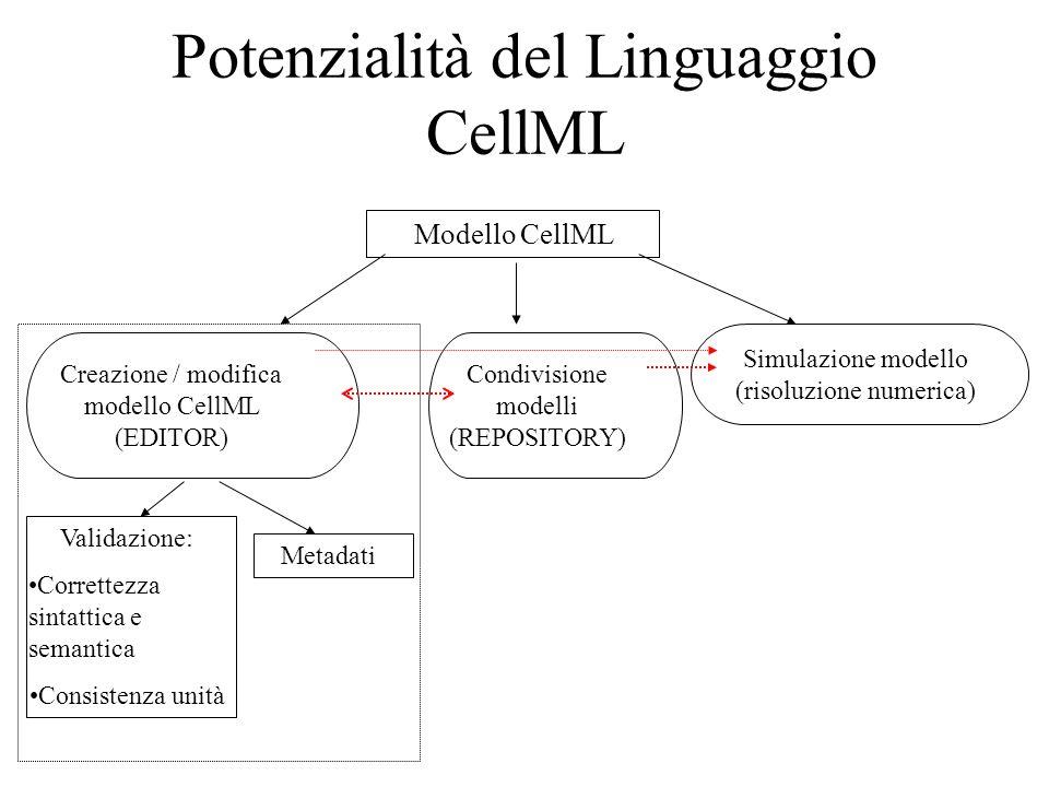 Potenzialità del Linguaggio CellML Modello CellML Creazione / modifica modello CellML (EDITOR) Condivisione modelli (REPOSITORY) Simulazione modello (risoluzione numerica) Validazione: Correttezza sintattica e semantica Consistenza unità Metadati