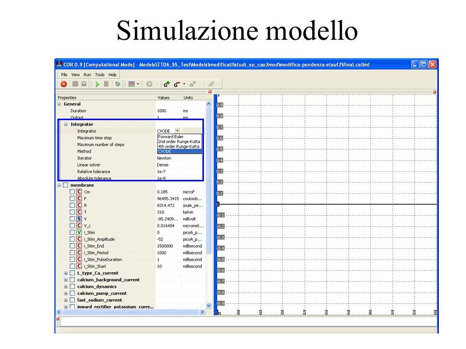 Simulazione modello