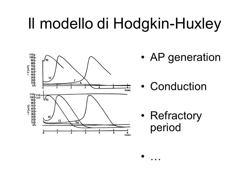 Il modello di Hodgkin-Huxley AP generation Conduction Refractory period …