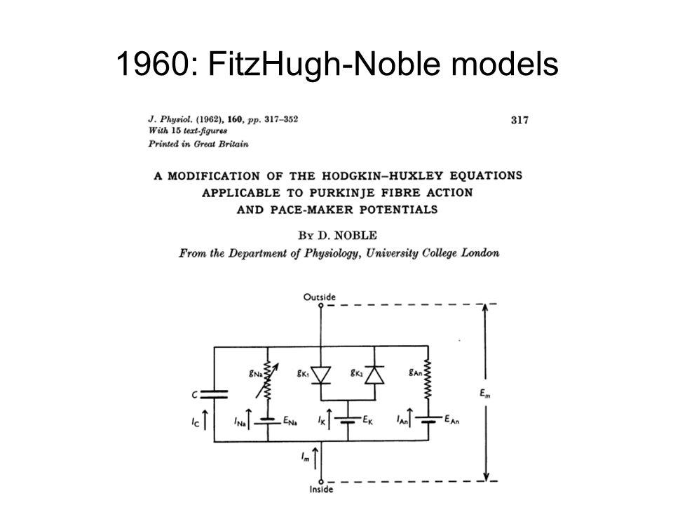 1960: FitzHugh-Noble models