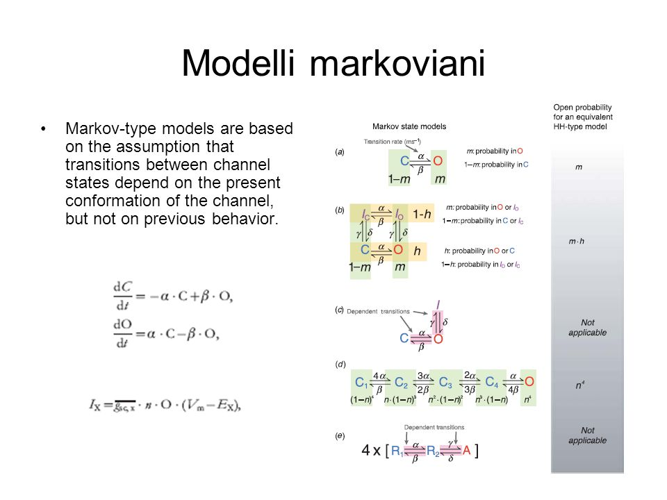 Modelli markoviani Markov-type models are based on the assumption that transitions between channel states depend on the present conformation of the ch
