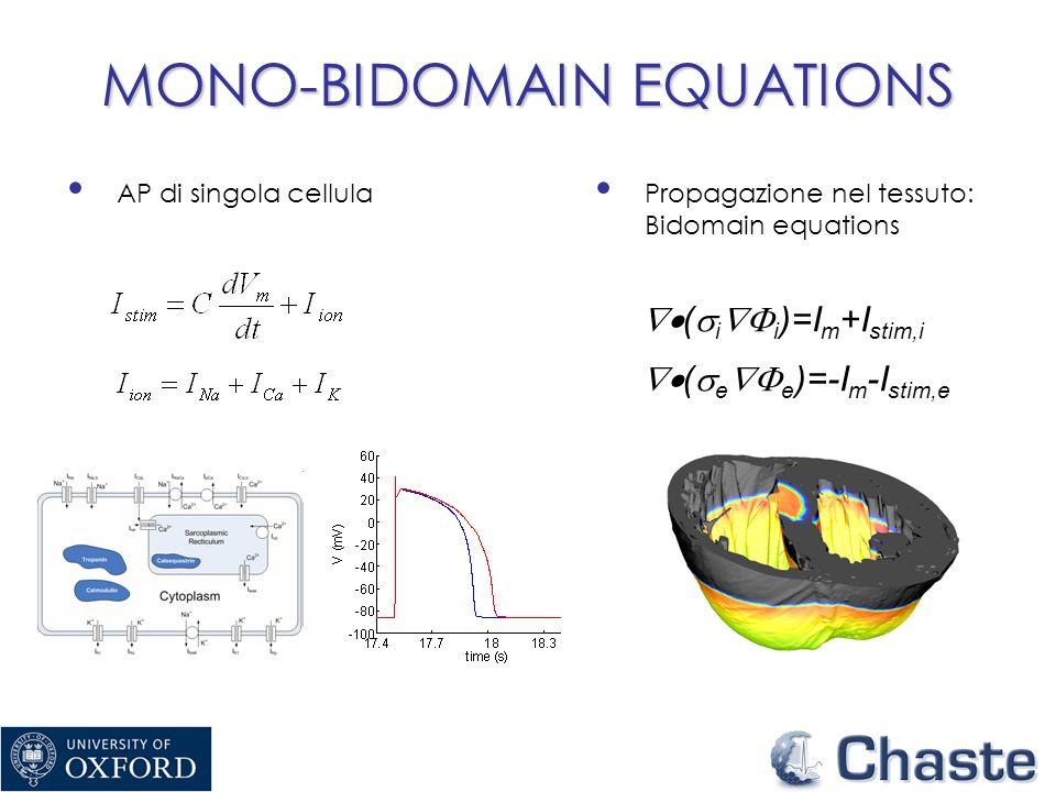 MONO-BIDOMAIN EQUATIONS AP di singola cellula ( i i )=I m +I stim,i ( e e )=-I m -I stim,e Propagazione nel tessuto: Bidomain equations