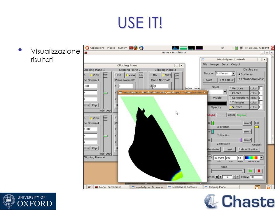 USE IT! Visualizzazione risultati
