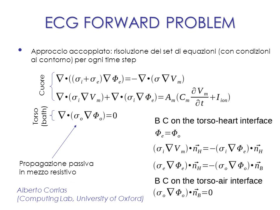 ECG FORWARD PROBLEM Alberto Corrias (Computing Lab, University of Oxford) Simulazioni Extracellular/bath potentials (Φ e )Heart activation (V m )