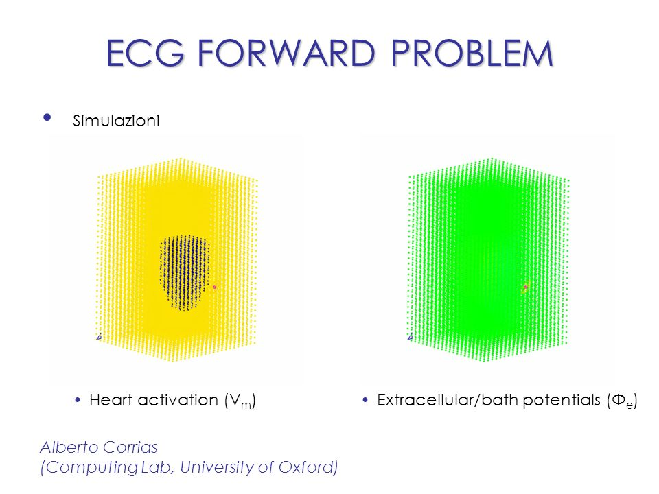 ECG in geometrie semplificate ECG FORWARD PROBLEM Alberto Corrias (Computing Lab, University of Oxford) Surface potential (Φ e ) Control HERG block AP cardiaco ECG (punto rosa)