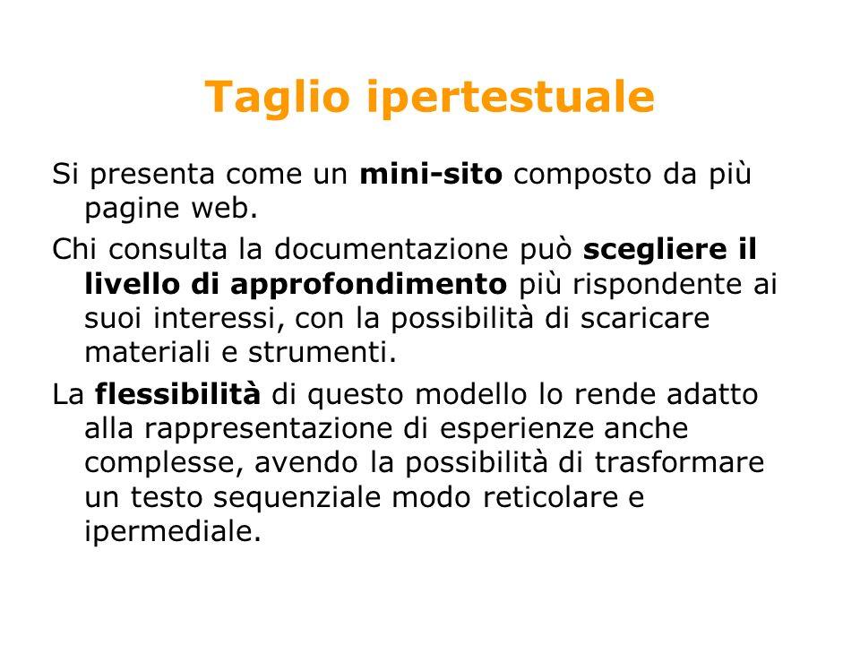 Taglio ipertestuale Si presenta come un mini-sito composto da più pagine web.