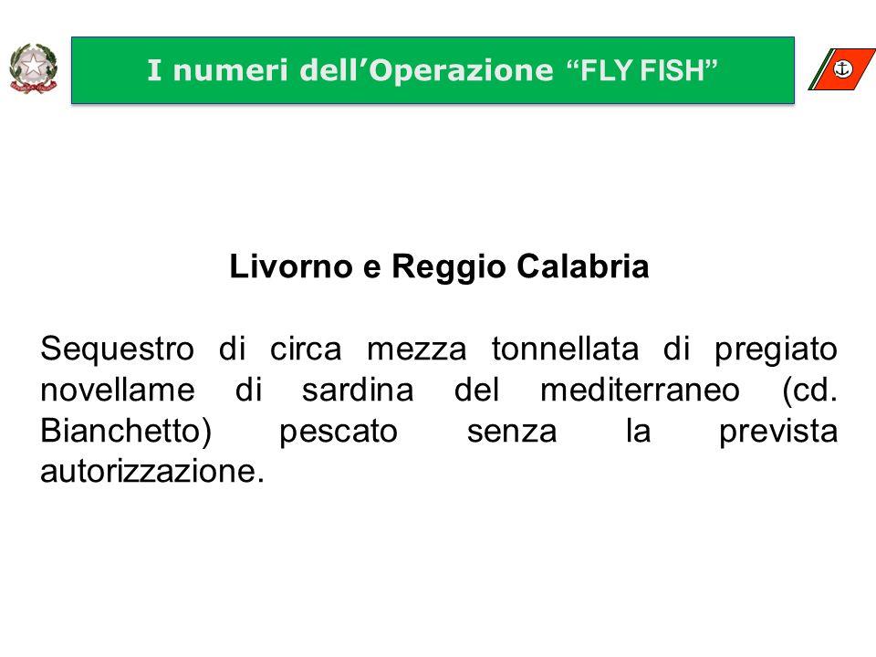 I numeri dellOperazione FLY FISH Livorno e Reggio Calabria Sequestro di circa mezza tonnellata di pregiato novellame di sardina del mediterraneo (cd.