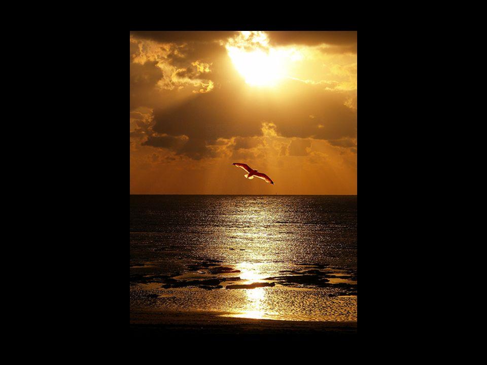 IL TEMPO è il regalo più prezioso che abbiamo perché è LIMITATO.