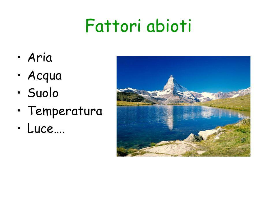 Fattori abioti Aria Acqua Suolo Temperatura Luce….