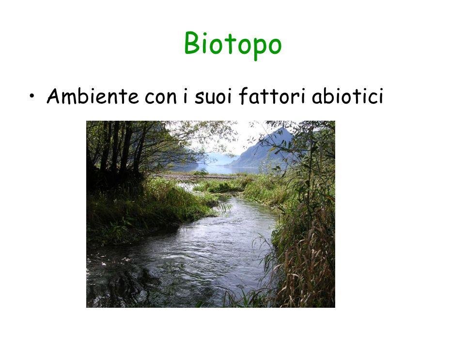 Biotopo Ambiente con i suoi fattori abiotici