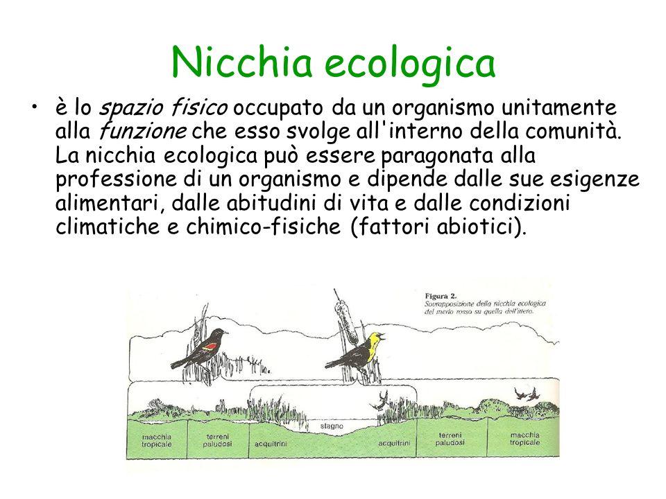 Nicchia ecologica è lo spazio fisico occupato da un organismo unitamente alla funzione che esso svolge all'interno della comunità. La nicchia ecologic