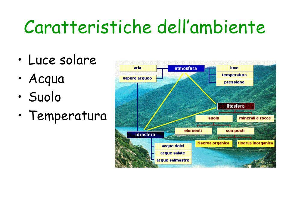 Caratteristiche dellambiente Luce solare Acqua Suolo Temperatura