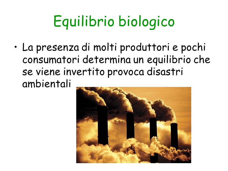Equilibrio biologico La presenza di molti produttori e pochi consumatori determina un equilibrio che se viene invertito provoca disastri ambientali