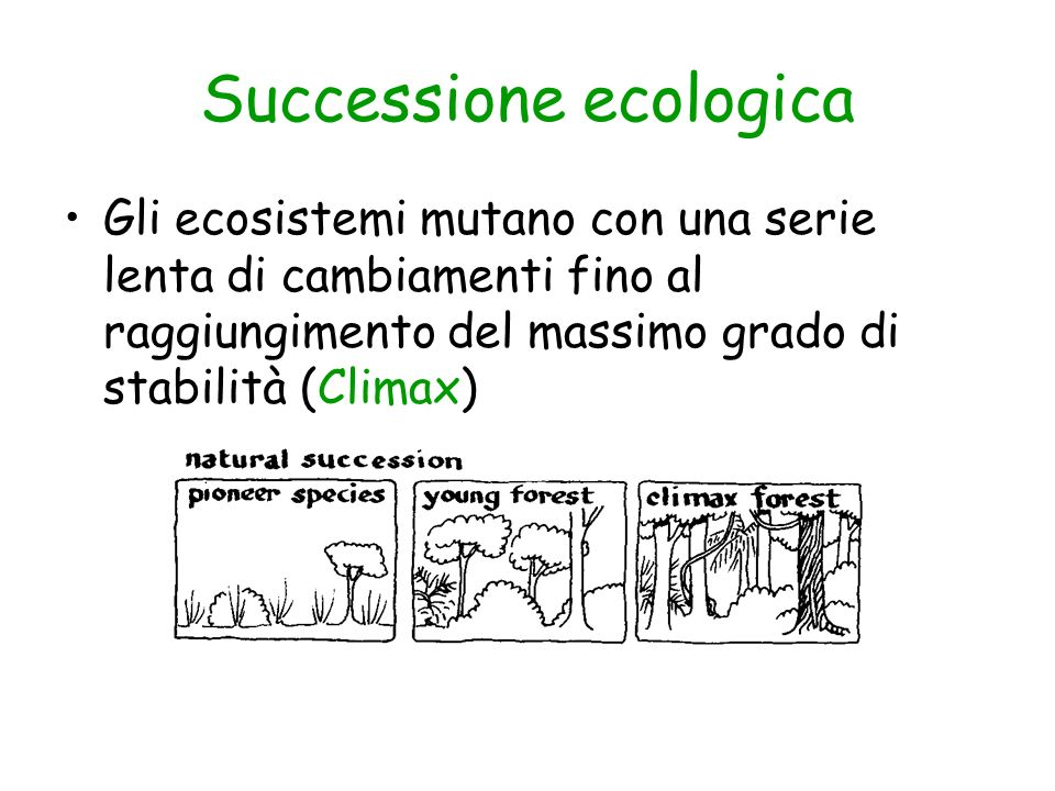 Successione ecologica Gli ecosistemi mutano con una serie lenta di cambiamenti fino al raggiungimento del massimo grado di stabilità (Climax)